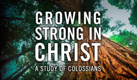 Growing Strong In Christ